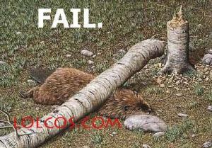 fail2 copy